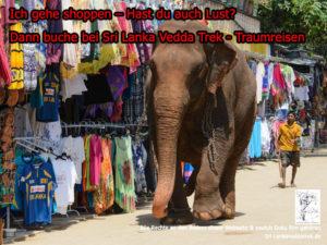 Elefant geht Shoppen
